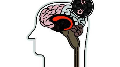 Вспомнить все: как выжать максимум из своей памяти. Не зря говорят «закрой глаза и попытайся вспомнить» — это работает!